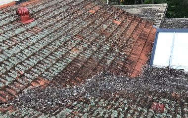 Cleaning Clay Roof Tiles before